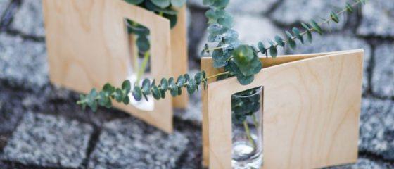 zielone rośliny w butelkach